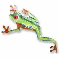 frog-pin